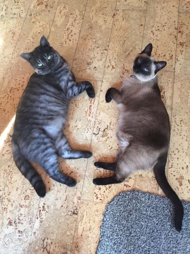 Astrid och Oskar